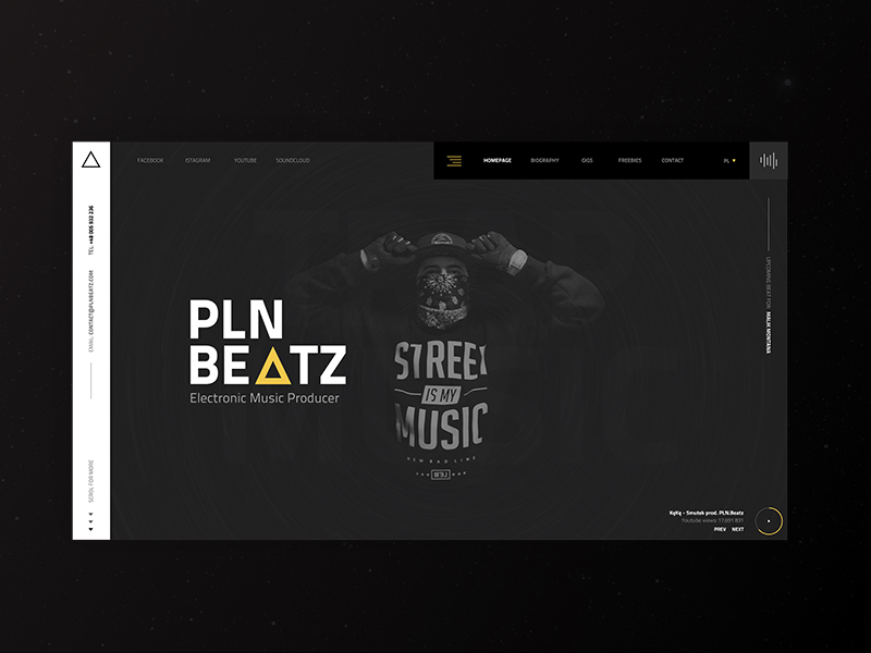Music Producer Website Example #1